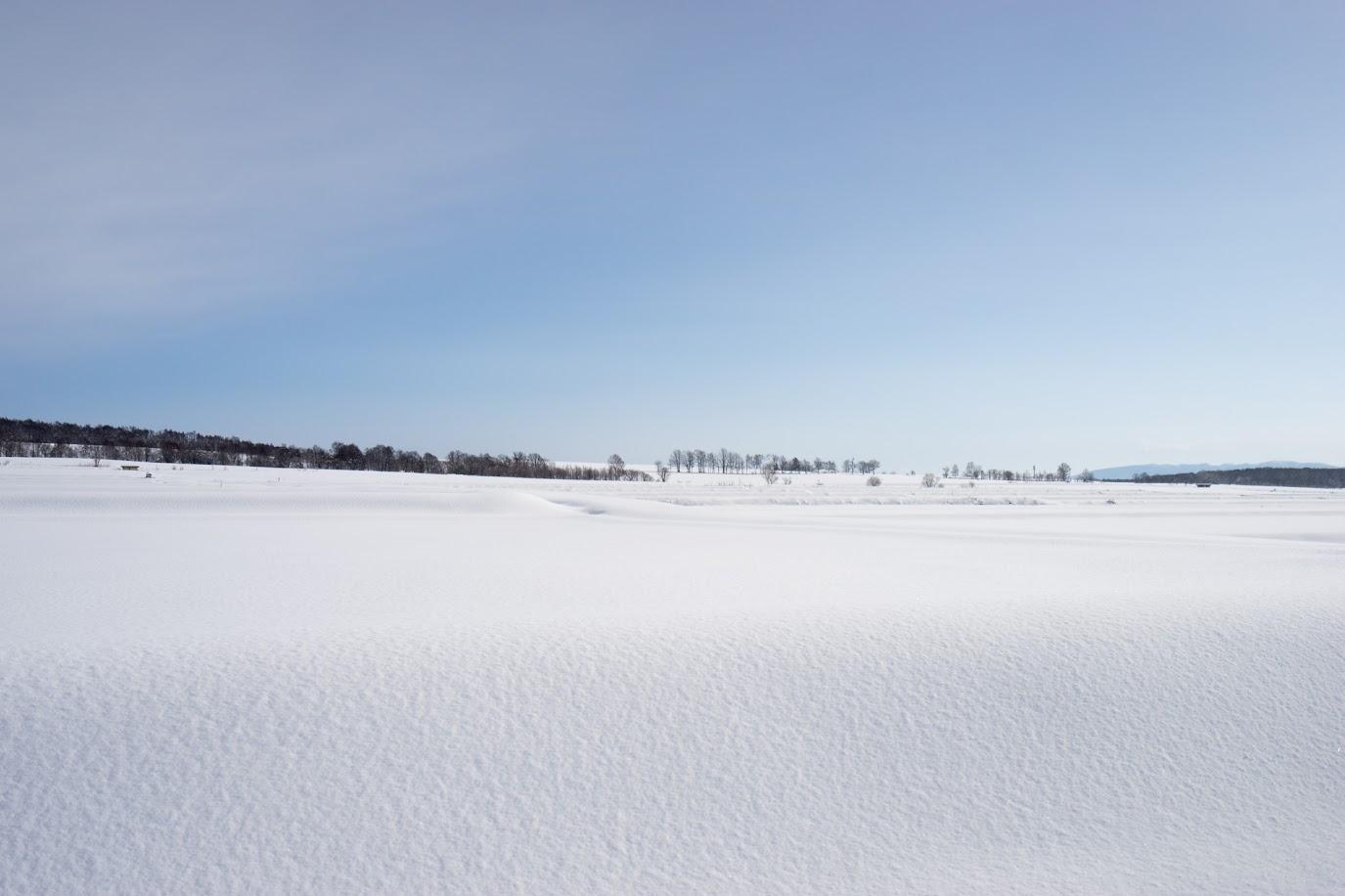 粉砂糖を振りかけたような雪原