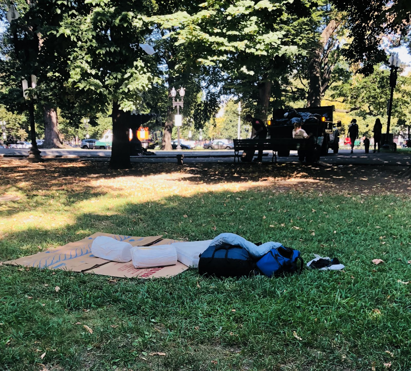 A bed in the middle of the park.  ( source: Sarah McManus )