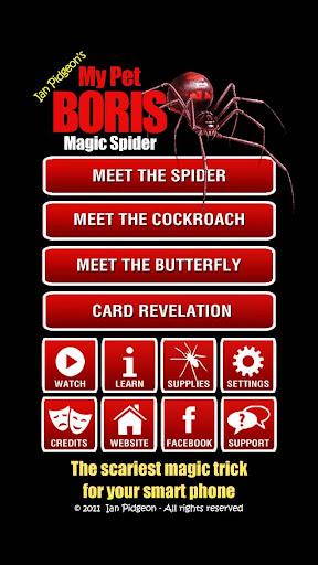 Magic Spider screenshot