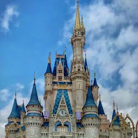 Cinderella's Castle by Chris Montcalmo - Buildings & Architecture Other Exteriors ( walt disney world, disney world, magic kingdom, architecture, travel )