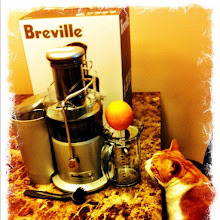 Photo: Even cats are interested in Breville Fountain Plus Juicer! #intercer - via Instagram, http://instagr.am/p/KF1aMPJflr/