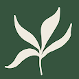 WorryTree: Anxiety Relief - CBT Self-Help Tool apk
