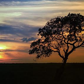 edge of palembang by Irfan Andariska - Landscapes Sunsets & Sunrises
