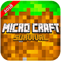 Micro Craft 2018 : Survival Free