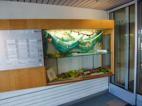 Photo: Eingangsbereich