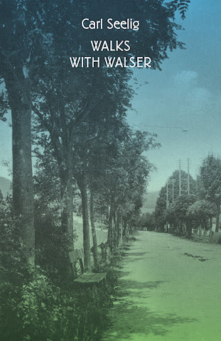 cover image for Walks with Walser
