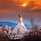 Dejan Nikolic_fotograf za vencanje_ svadba_weding photo_best wedding photo_krusevac_beograd_paracin_novi sad_vrnjacka banja_aleksandrovac_nis.jpg