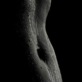 Sliv by Goran Kalanj - Nudes & Boudoir Artistic Nude ( nude, black and white, woman, drops, nude photos, skin )
