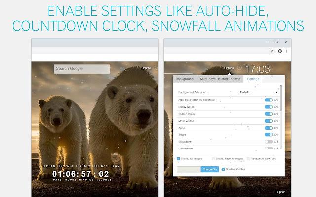Polar Bear Wallpaper HD Polar Bears New Tab