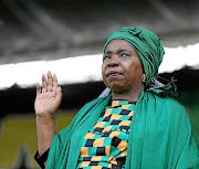 A group of ANC members in Eastern Cape who supported Nkosazana Dlamini-Zuma's bid to be party leader want the provincial executive committee to be disbanded.