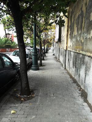 alberi di vinatt