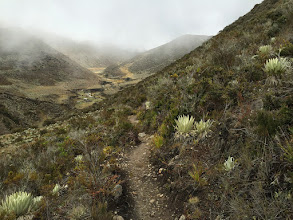 Photo: Trail to Pico Pan De Azucar.