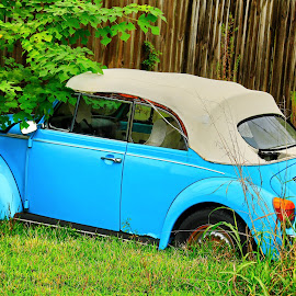 Abandoned VW by Ron Olivier - Artistic Objects Industrial Objects ( abandoned vw,  )