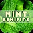 Mint Benefits icon