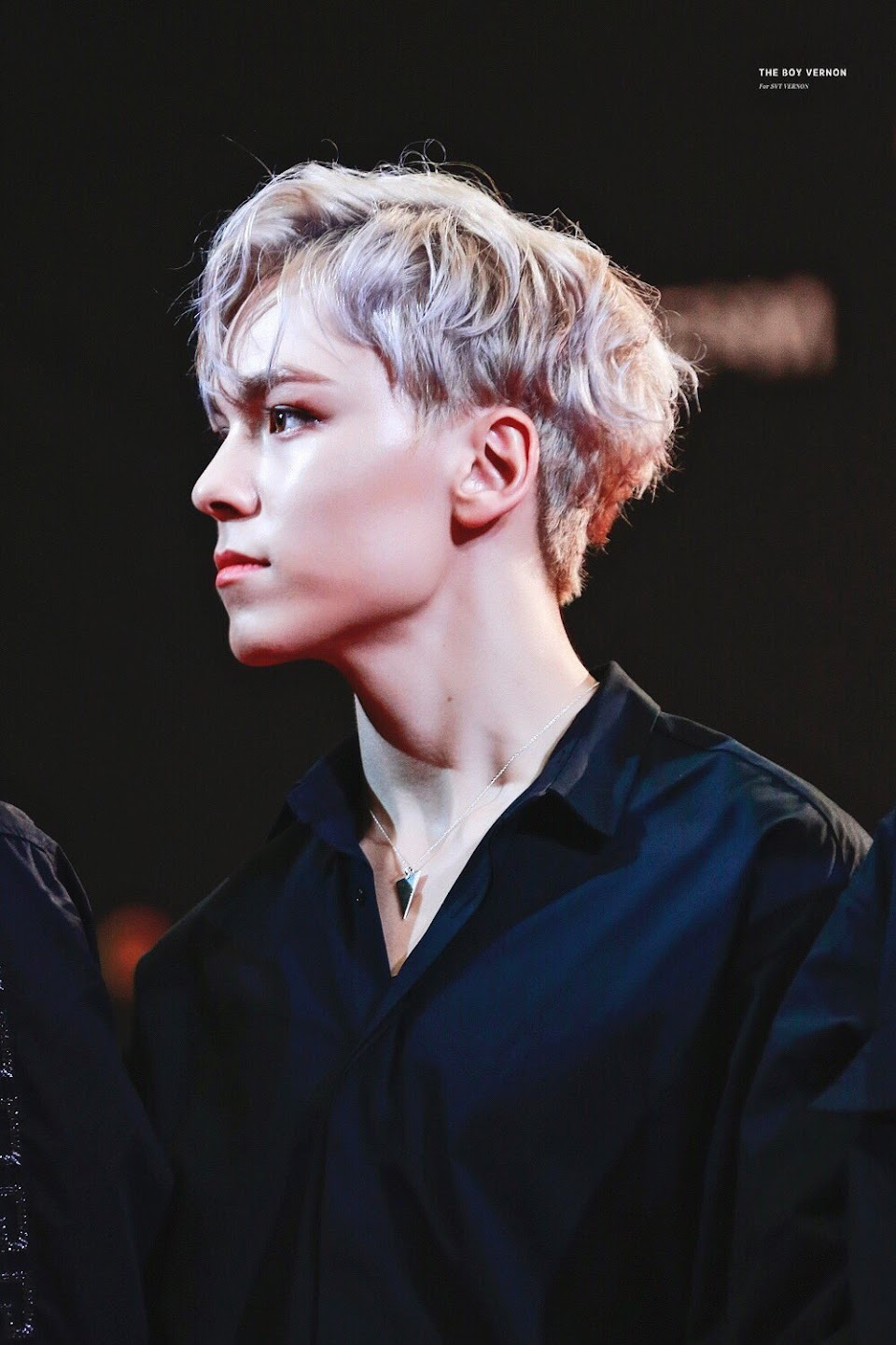 vernon side profile theboyvernon