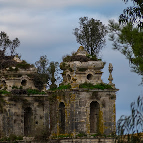 Mosteiro de Seiça by Edu Marques - Buildings & Architecture Decaying & Abandoned ( old house, old, tower, ancient, trees, landscapes, landscape )