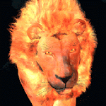 Flaming Lion Live Wallpaper Icon