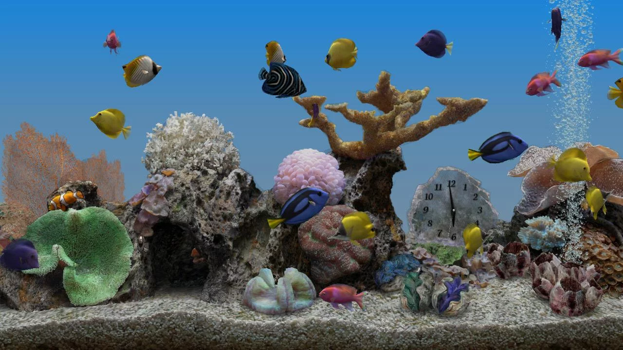 Go Launcher 3d Wallpaper Marine Aquarium 3 3 Android Apps On Google Play