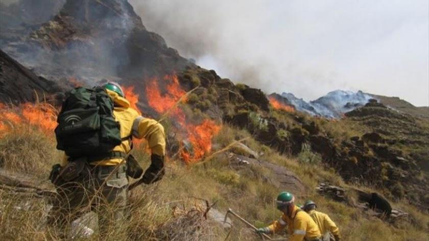 Arden unos 3.000m2 de matorral junto a Rodalquilar