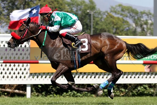 Corre Cote (Seeking The Dia) se adjudica Condicional (1000m-Pasto-CHS). - Staff ElTurf.com