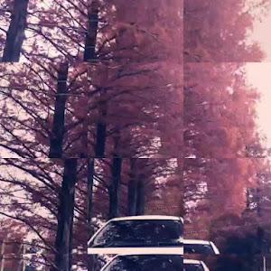 ヴィッツのカスタム事例画像 恵(ケィ)🌹✨さんの2019年12月23日06:02の投稿