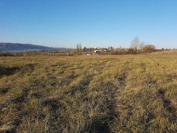 terrain à Sermérieu (38)
