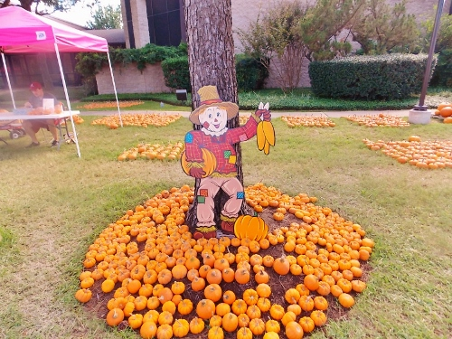 Katy area fall festivals and pumpkin patch.