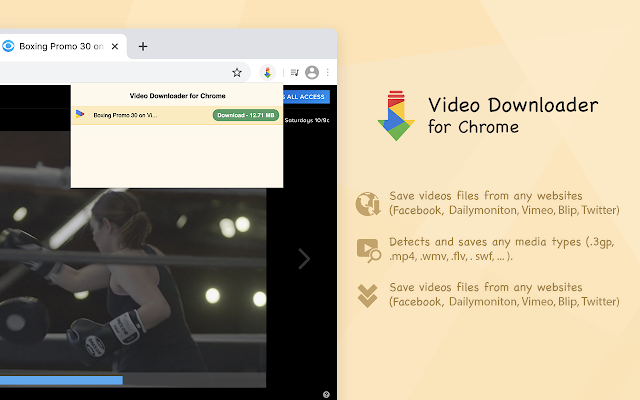 Video Downloader for Chrome