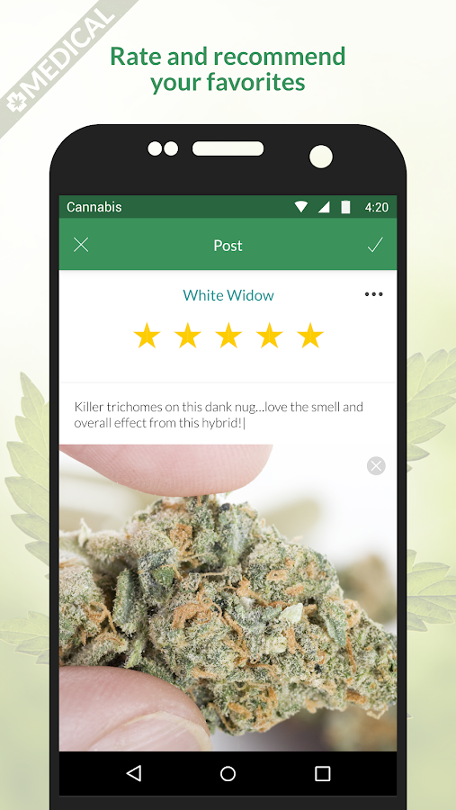 MassRoots: Medical Cannabis- screenshot