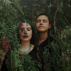 Wedding photographer Luis ernesto Lopez (luisernestophoto). Photo of 03.01.2018