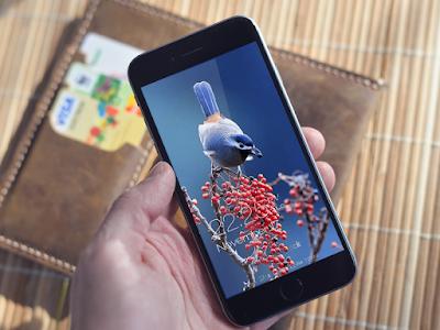 Birds Wallpaper HD Lockscreen screenshot 4