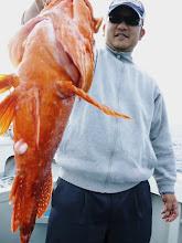 Photo: 怪獣アラカブゲット! ・・・怪獣が怪獣を釣った。  ゴメンナサイ。