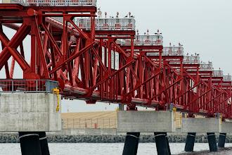 Photo: 赤い鉄筋とコンクリに黒い脚の組み合わせがイイ。  羽田空港 D滑走路 Haneda Airport, D Runway #hanedaairport  #pentaxusersjp