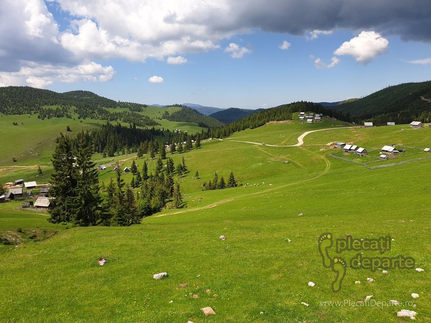 muntii apuseni obiective turistice poiana calineasa garda de sus tara motilor