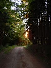 Photo: silent hikes