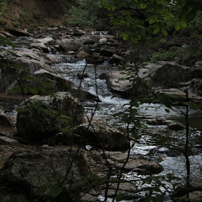 Canyon river Rocks by Bratislav Stamenković - Nature Up Close Rock & Stone ( canyon, stone, beauty in nature, rocks, river )
