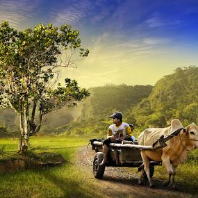 Going Home by Ketut Manik - Transportation Other