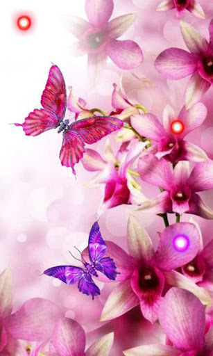 Orchide Pink live wallpaper