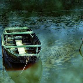 by Zoran              Radunovic - Transportation Boats