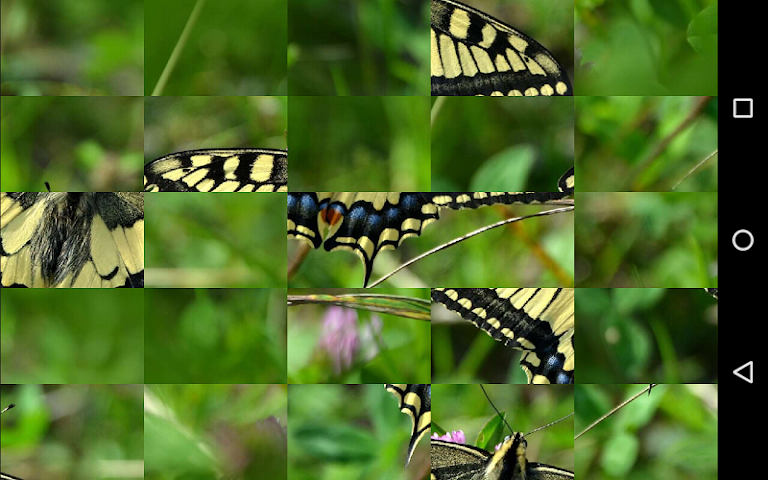 android Tile Puzzles · Butterflies Screenshot 9