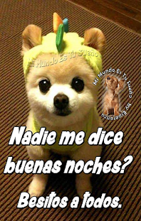 Buenas Noches Dulces Sueños - náhled