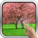 Magic Touch: The Sakura Garden icon