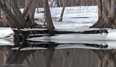 Photo: Ice shelves