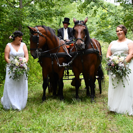 Mrs. and Mrs. by Liz Rosas - Wedding Other ( horse-drawn cart, horse drawn cart, lesbian, mrs. and mrs., ladies, brides, wives, horses )
