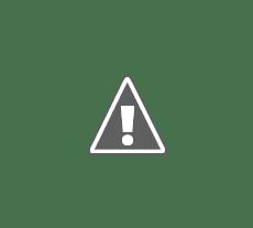 SISEVE