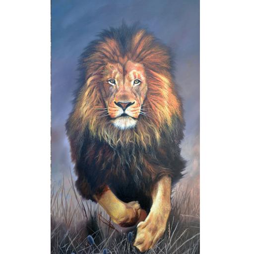 Lion Wallpaper Hd Apk Download Apkpure Co