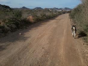 Photo: På Eftermiddagen tog Rozz och jag en långpromenad ut på landet och runt för att sedan komma in i byn igen