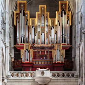 Pipe Organ at Almudena Cathedral  by Eric Criswell - Buildings & Architecture Other Interior ( music, church, faith, madrid, white, instrument, almudena, spain, pipe, red, organ, cathedral, gold, religious )
