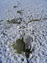 Photo: Praėjusios žiemos pėdos