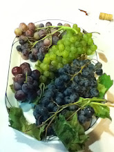 Photo: This meal was finished off with the first grapes of the season -- all are used in winemaking.